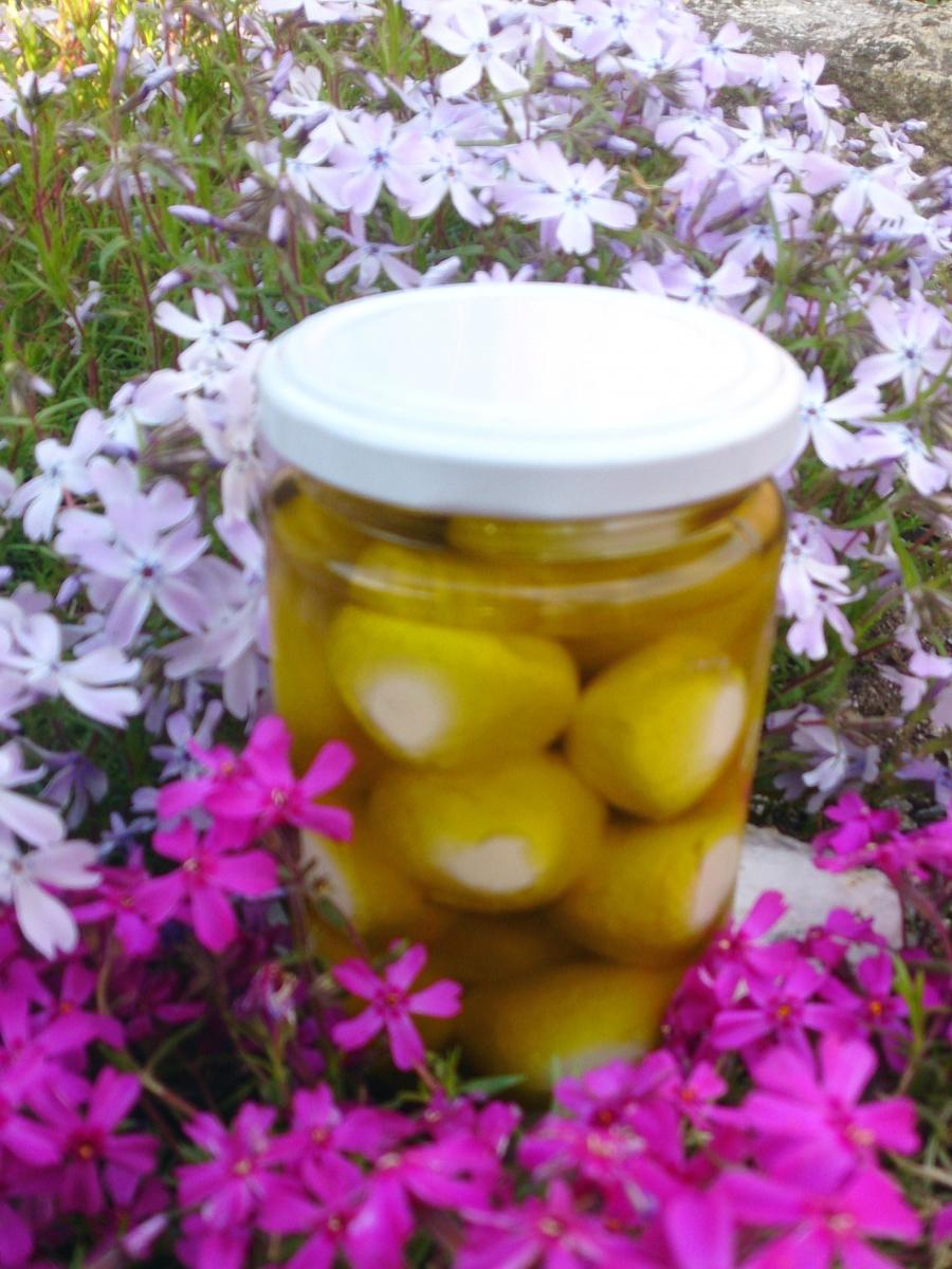Ziegenfrischkäsebällchen in Olivenöl
